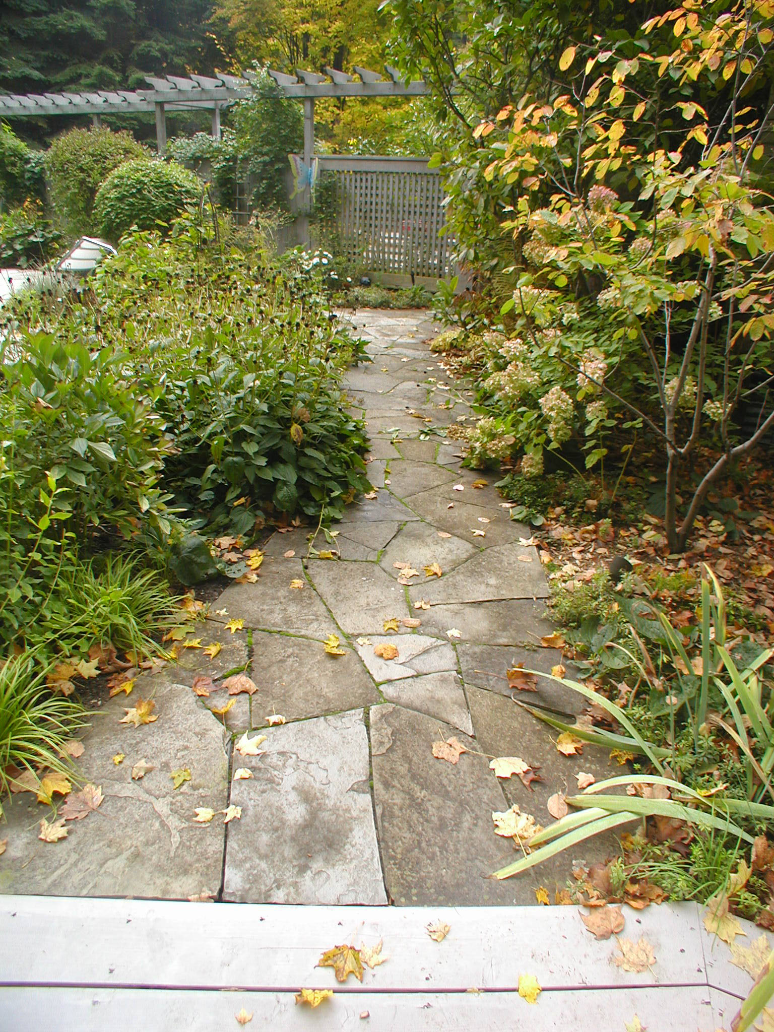 astonishing-flagstone-garden-walkway