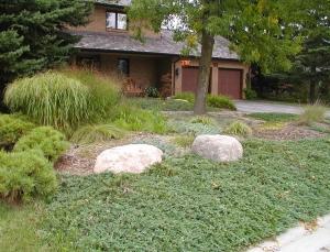 Eco Front Garden