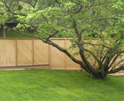 Lattace Fencing